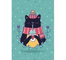 Winter cat Photographic Print