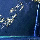 Waterfall light, Milford Sound, New Zealand by Lisa Wilson