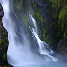 Waterfall Green, Milford Sound, New Zealand by Lisa Wilson