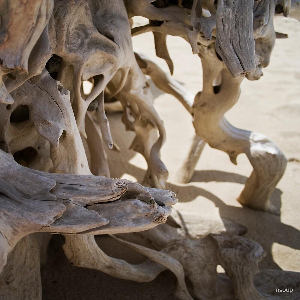 Drift wood by nsoup