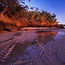 morning kisses - Cape York by Tony Middleton