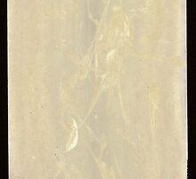 Silkscreens - 0013 - Weather Spirits 2 by wetdryvac