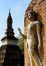 Serene Buddha by Dave Lloyd