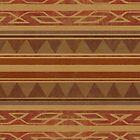 Navajo  by Terry  Fan