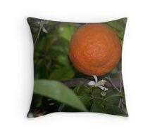Orange tree.  Throw Pillow