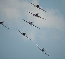 Formation Flying - To a T, Albury, 2008 by muz2142