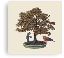 Enchanted Bonsai  Canvas Print