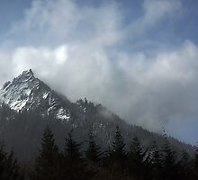 Snoqualamie Pass by Patricia Betts