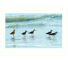 Sandpipers march Art Print