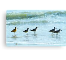 Sandpipers march Canvas Print
