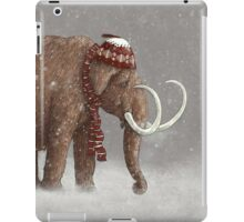 The Ice Age Sucked iPad Case/Skin