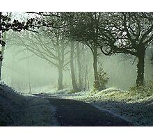 MISTY     LANDSCAPE    SUNRISE ON FROSTY TRACK Photographic Print