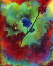 BlueBird by Martina Stroebel