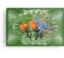 Tulips with Grape Hyacinth Metal Print