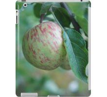Autumn Apple iPad Case/Skin