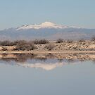 The Mountain in it's Reflection by Cheyenne
