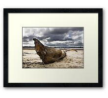 Desolate Framed Print