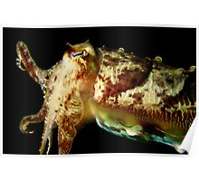 Hello Mr Cuttlefish Poster