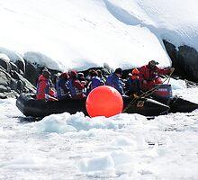 Redbubble In Antarctica!! by Robyn Maynard