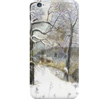 winter bridge iPhone Case/Skin