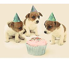 Vintage Puppy Birthday Card Photographic Print
