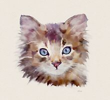 Tiddles - Ginger Tabby Kitten by Bamalam Art and Photography
