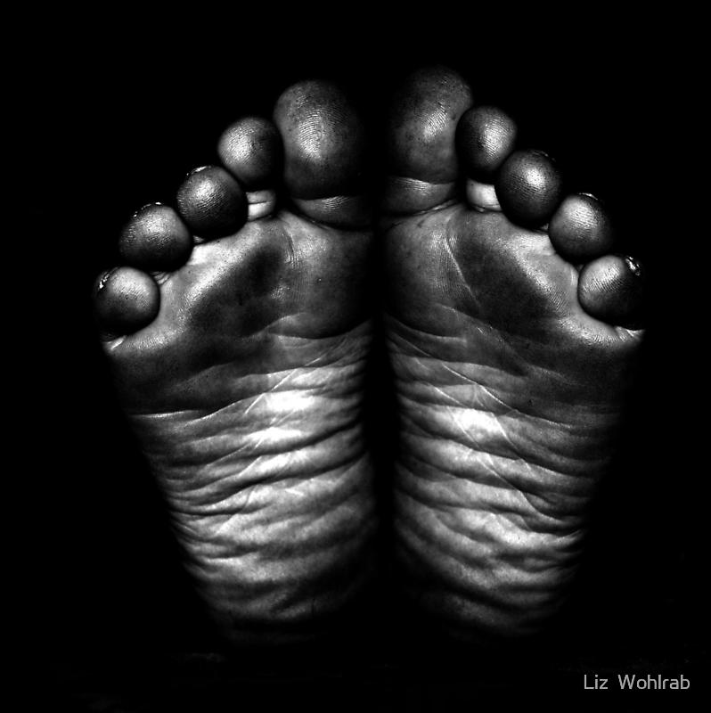 Metalic Feet by Liz  Wohlrab