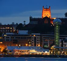 NEWCASTLE AT NIGHT. by Phil Woodman