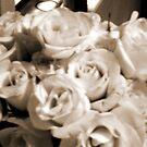 Roses III Sepia by Bernadette Claffey