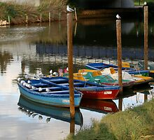 Boats on the Yarkon by Segalili