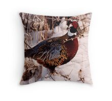 Wisconsin Pheasant Throw Pillow