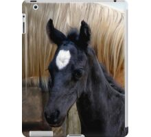 """""""A Mother's Watchful Eye"""" iPad Case/Skin"""
