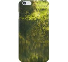 reality and image - realidad y reflejo iPhone Case/Skin