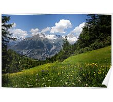 Switzerland Landscape Poster