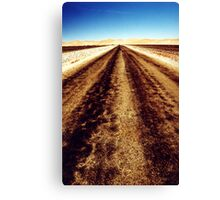 Remote road Canvas Print