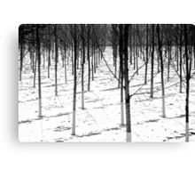 Winter army Canvas Print