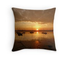 The start of the day .... Throw Pillow