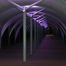 Purple Tunnel by KarenM
