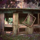 Abandoned Coop by DeeprBlue