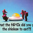 What did you feed the chicken by Tim Constable