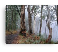 Road To Nowhere - Victorian Alps, Victoria Australia Canvas Print