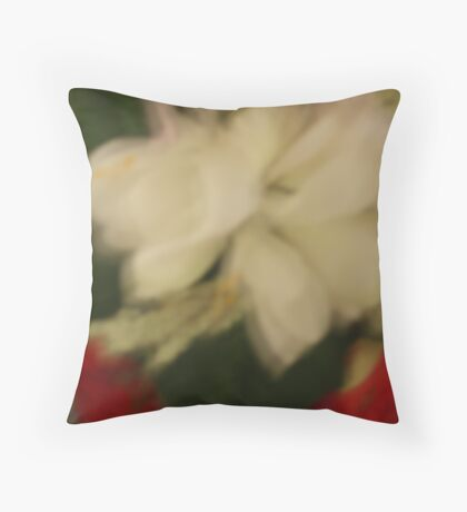 abstract of a mirror ornament for a christmas present Throw Pillow