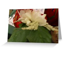 beauty of christmas in the eyes of the beholder Greeting Card