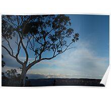 Valley Sentinel - Blue Mountains Series Poster