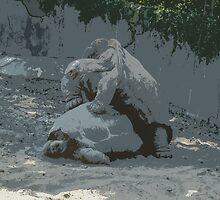 The Art of Love - Galápagos Tortoise by Alec Owen-Evans