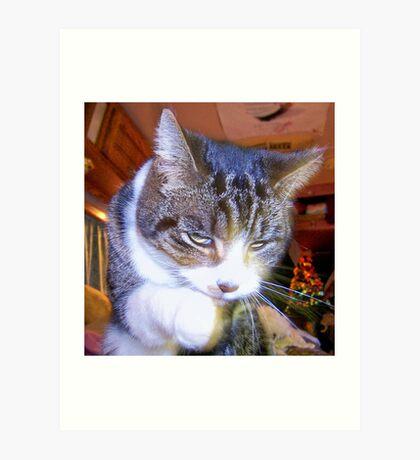Feline Fur Cleaning Art Print