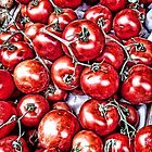 Tomatos by Roxy J