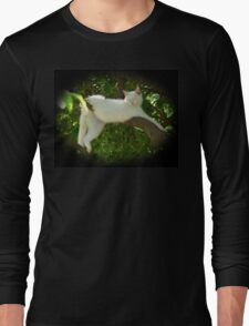 Lazy Twisted Cat-robatic Cat-tortionist Kitty Long Sleeve T-Shirt