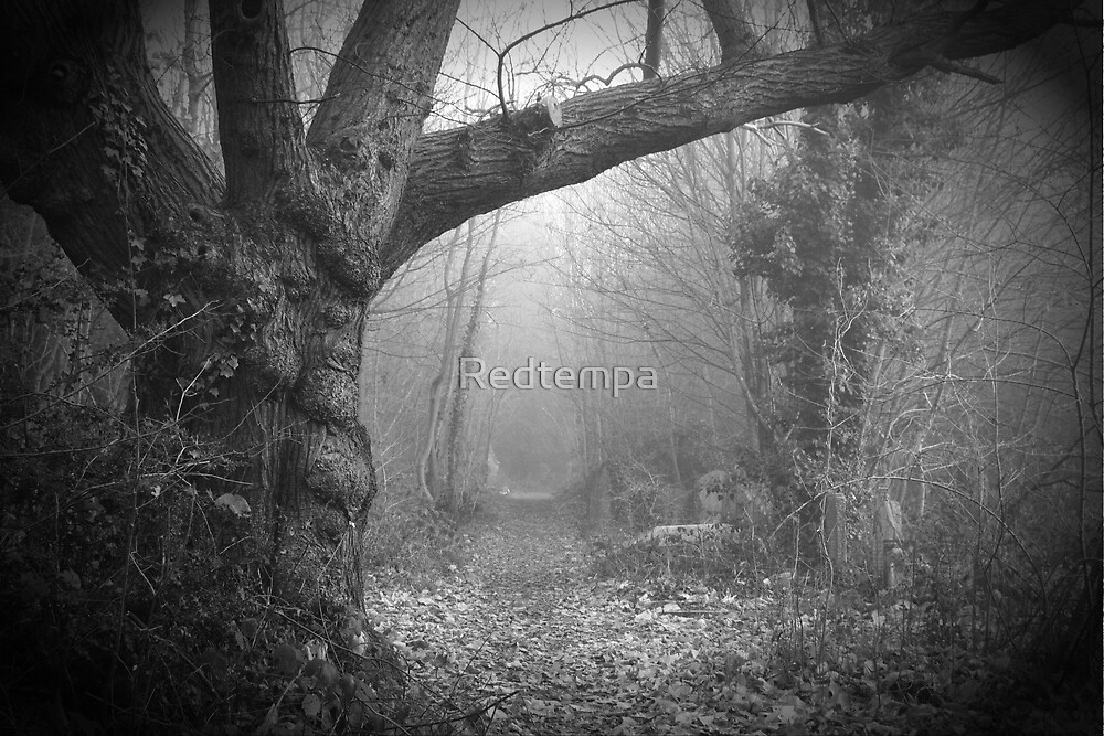 GALLOWS POLE by Redtempa