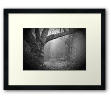 GALLOWS POLE Framed Print